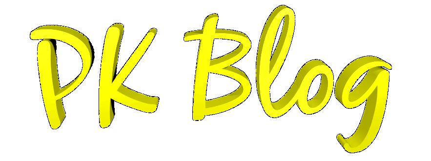 Schrift Logo PKBlog