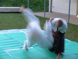 Aikido Wurf Demonstration in Zuerich