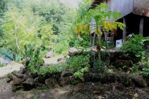 Kräuterspirale in Sankofa Rainbow Roots Farm