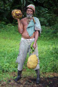 Rasta mit Jackfrucht in Rainbow Roots Farm, St. Lucia