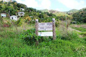 Sankofa Rainbow Roots Farm in St. Lucia