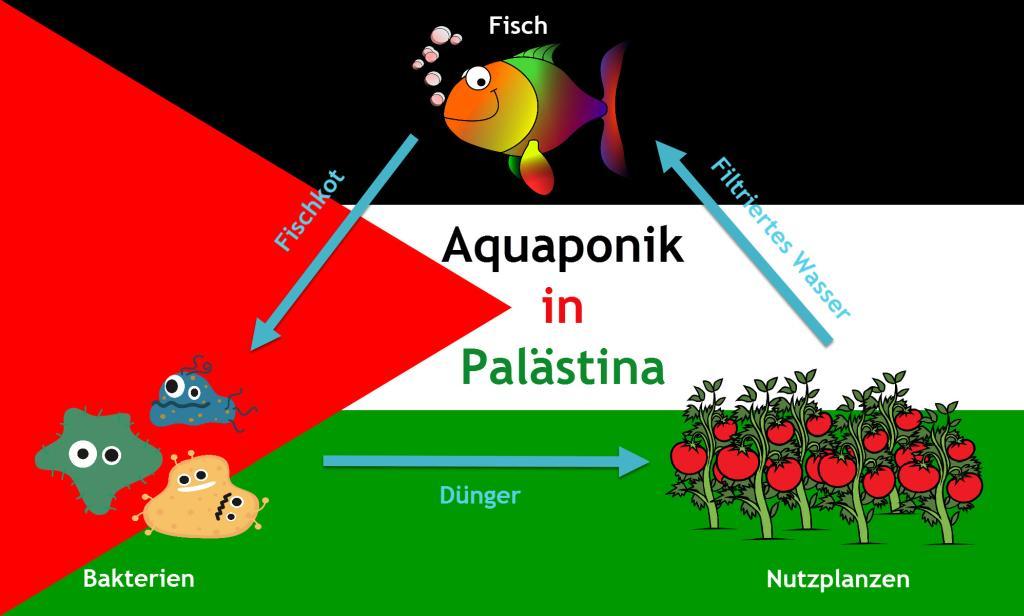 Aquaponik in Palästina