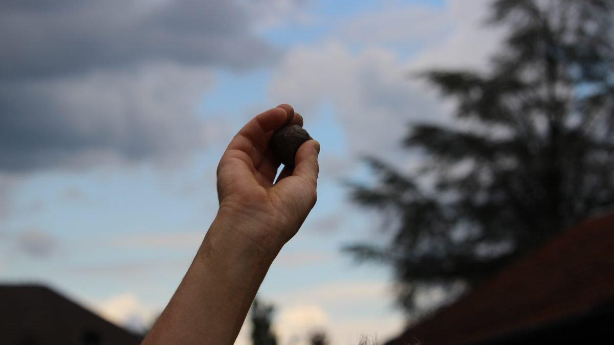 Eine Samenbombe zu Werfen