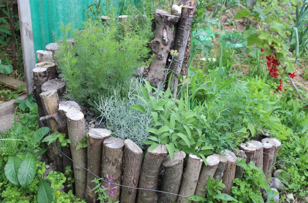 Holz-Kräuterspirale