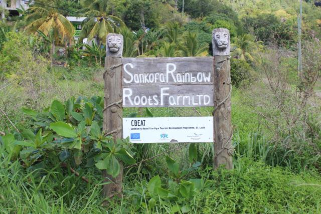sankofa-rainvbow-roots-farm