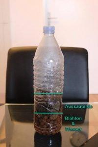 PET-Flasche mit Blähton, Aussaaterde und Wasser