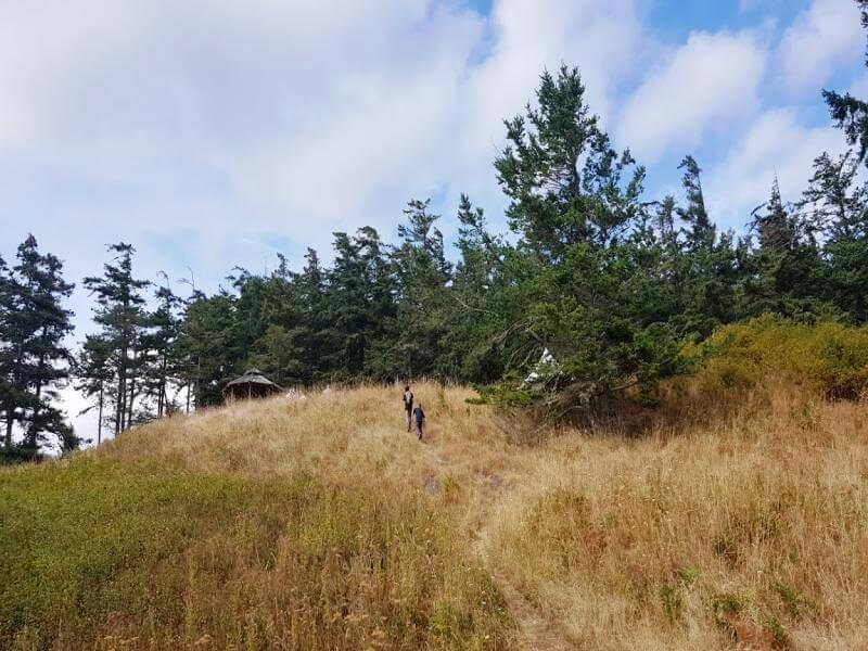 Weg zum Waldkindergarten