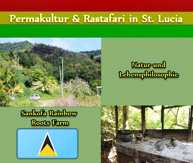 """Natur und Lebensphilosophie in der """"Sankofa Rainbow Roots Farm"""""""