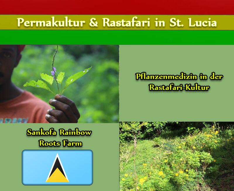Pflanzenmedizin in der Rastafari-Kultur
